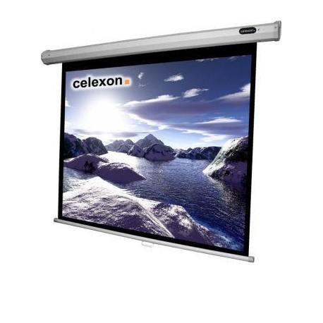 Celexon - Manual Mural 200x150