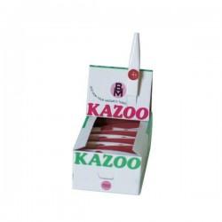 ZB - BM - KZ170