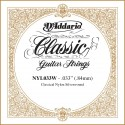 D'addario - NYL033W