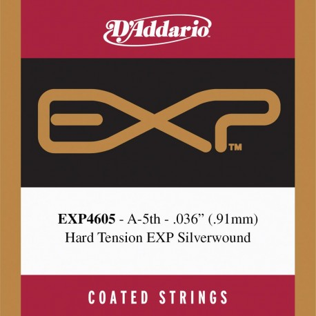 D'addario - EXP4605 1