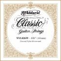 D'addario - NYL026W