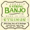 D'addario - J60 5-STRING BANJO, STAINLESS STEEL, LIGHT, [10-20] 1