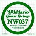 D'addario - NW037