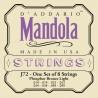 D'addario - EJ72 PHOSPHOR BRONZE MANDOLA LIGHT [14-49] 1