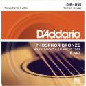 D'addario - EJ42 RESOPHONIC GUITAR [16-56]