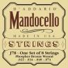 D'addario - J78 MANDOCELLO [22-74] 1