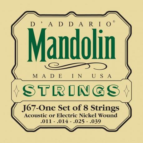 D'addario - J67 NICKEL MANDOLIN STRINGS, MEDIUM, [11-39] 1