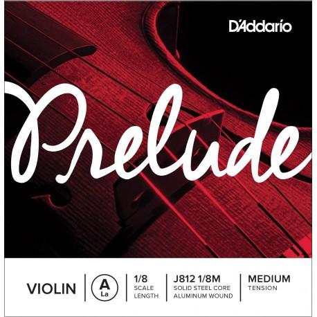 Dáddario Orchestral - J812 1/8M 1